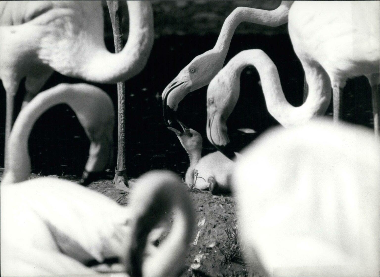 IMAGO / ZUMA / Keystone